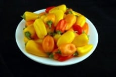 calories-in-mini-peppers1