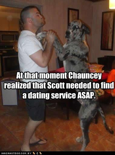funny-dog-pictures-dating-service