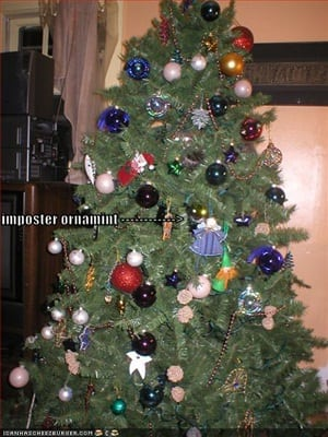funny-pictures-christmas-tree-cat